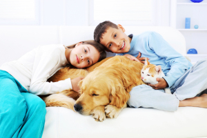 Can I have a home security system and pets?